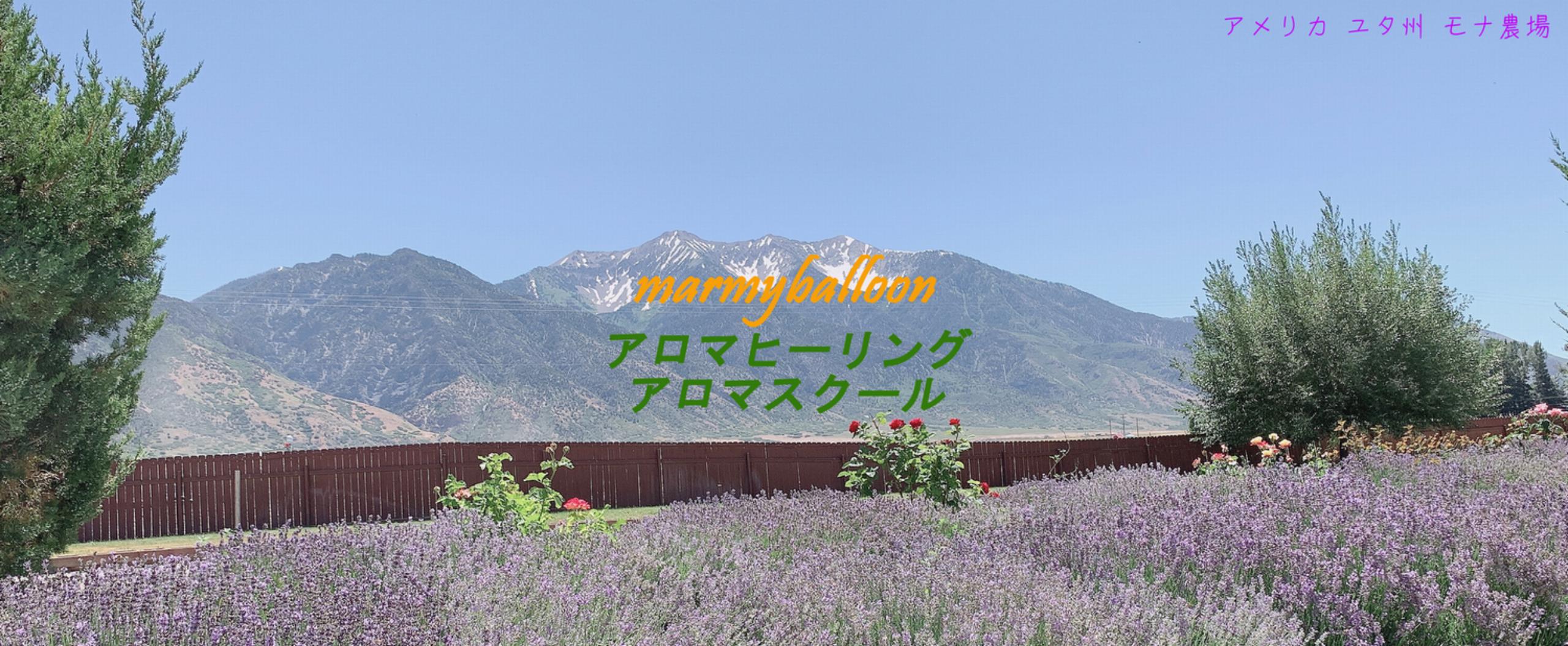 兵庫-赤穂 日常生活をアロマで活性化